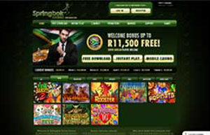 Springbok Casino website